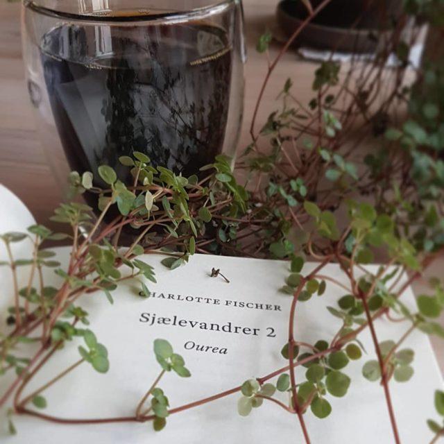 Sjælevandrer 2 – Ourea af Charlotte Fischer