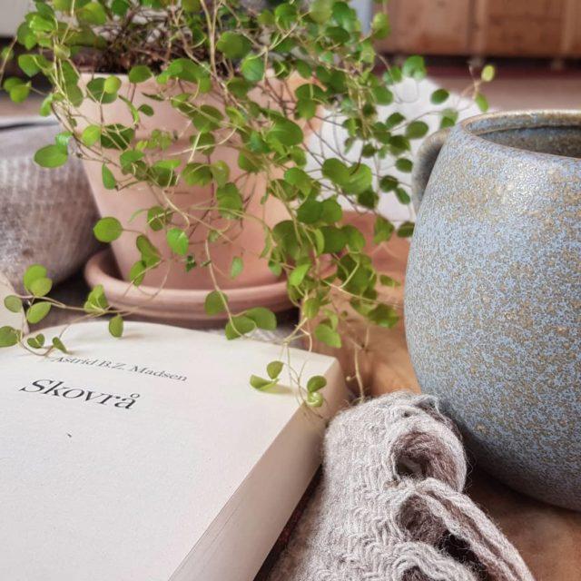 Skovrå: Når træerne vokser ind i hjertet af Astrid B. Z. Madsen